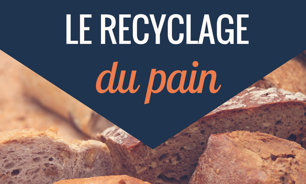 recyclage pain anti gaspillage